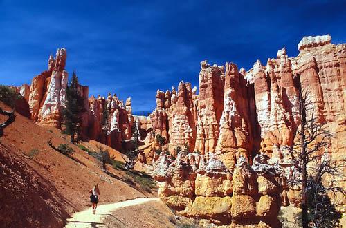 Геологическая структура