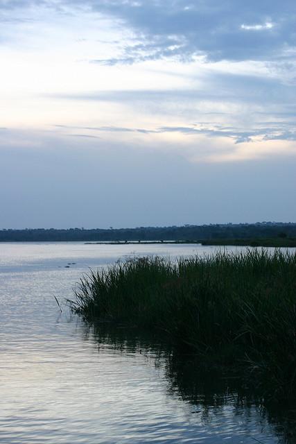 Белый Нил